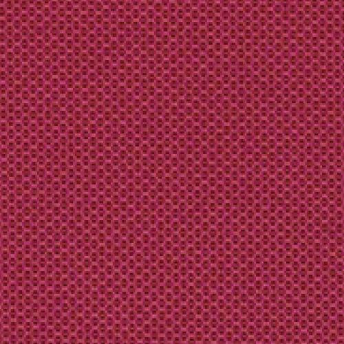 Rasberry Cushion